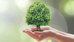 Contributi a fondo perduto ambiente e sicurezza, tecnologie green